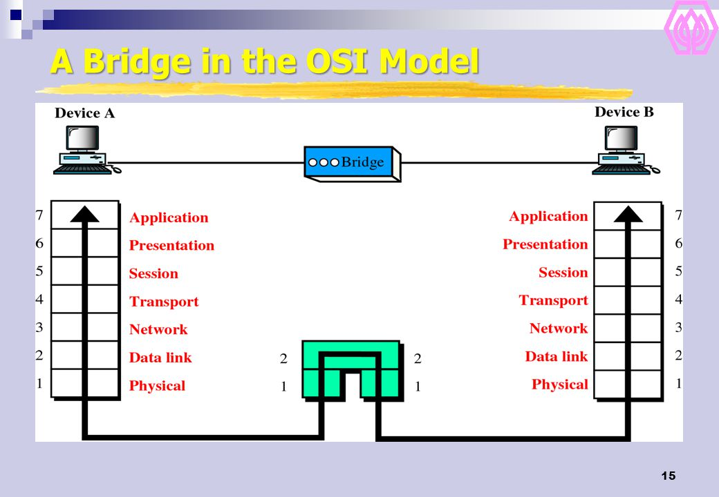 A Bridge in the OSI Model