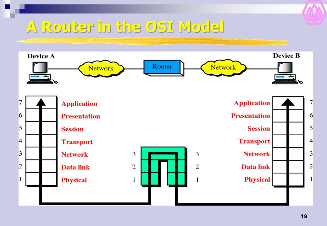 A Router in the OSI Model