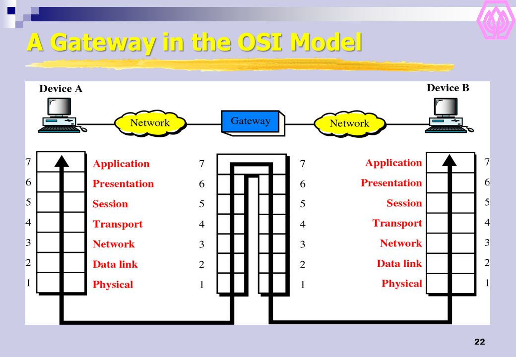 A Gateway in the OSI Model