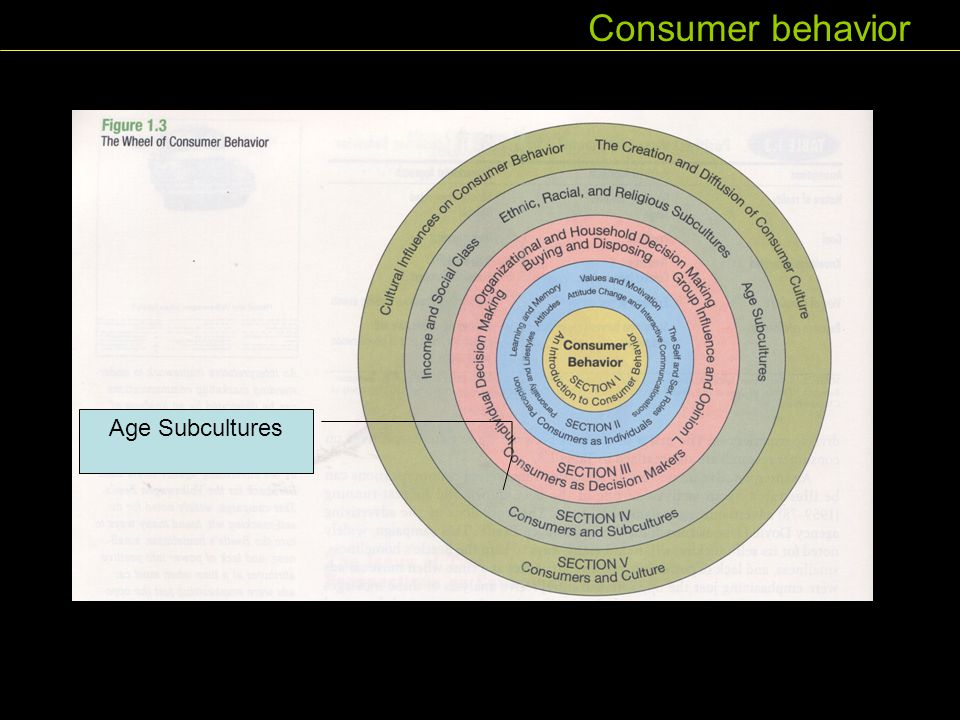 Consumer behavior Age Subcultures