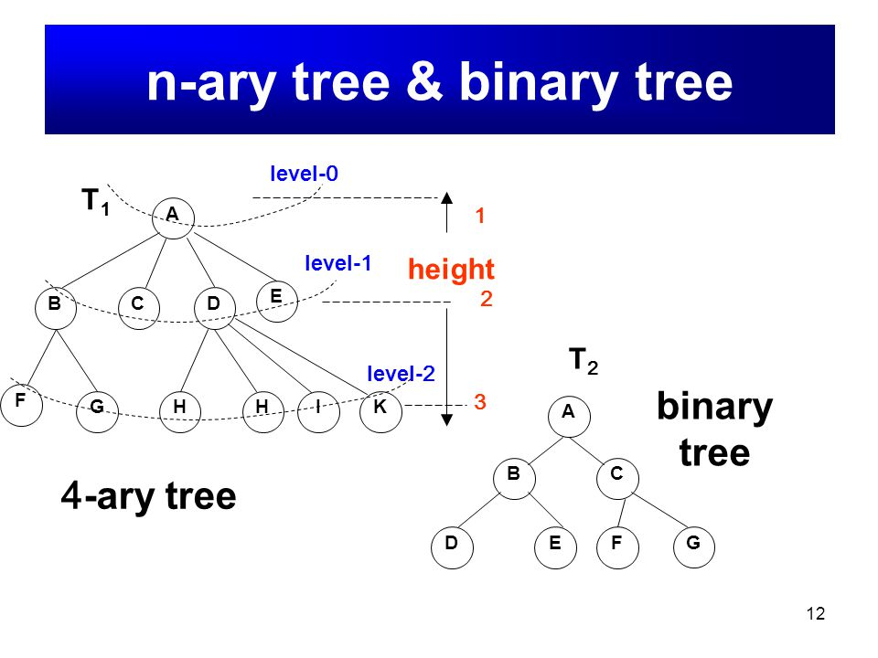 n-ary tree & binary tree
