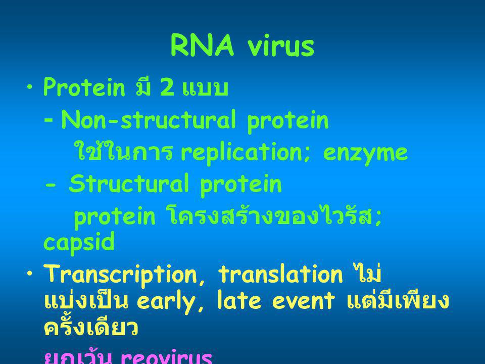 RNA virus Protein มี 2 แบบ - Non-structural protein