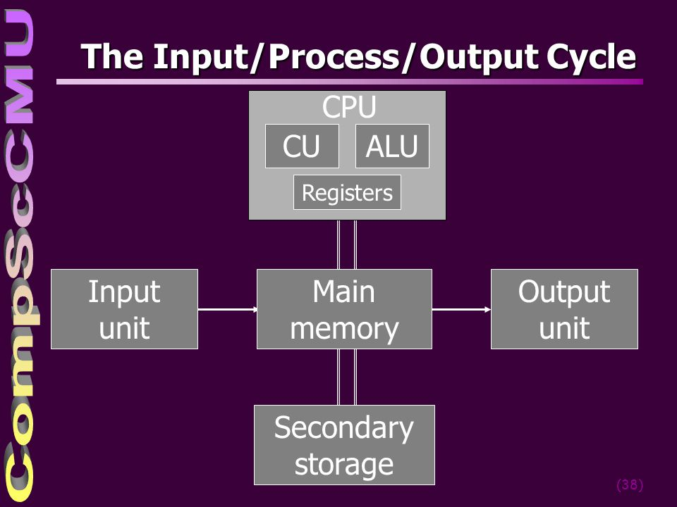 The Input/Process/Output Cycle
