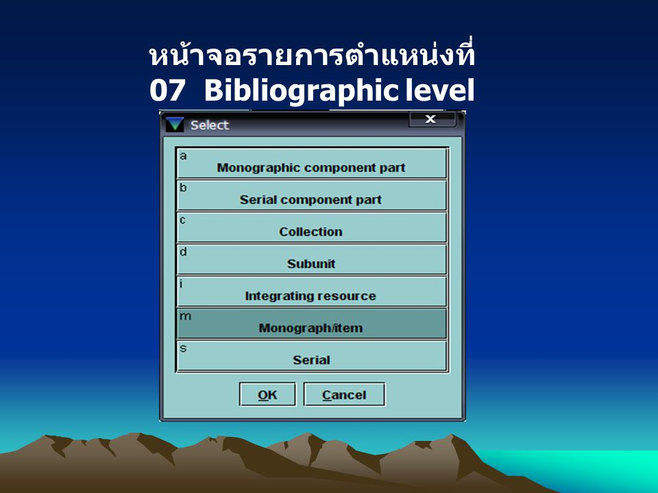 หน้าจอรายการตำแหน่งที่ 07 Bibliographic level