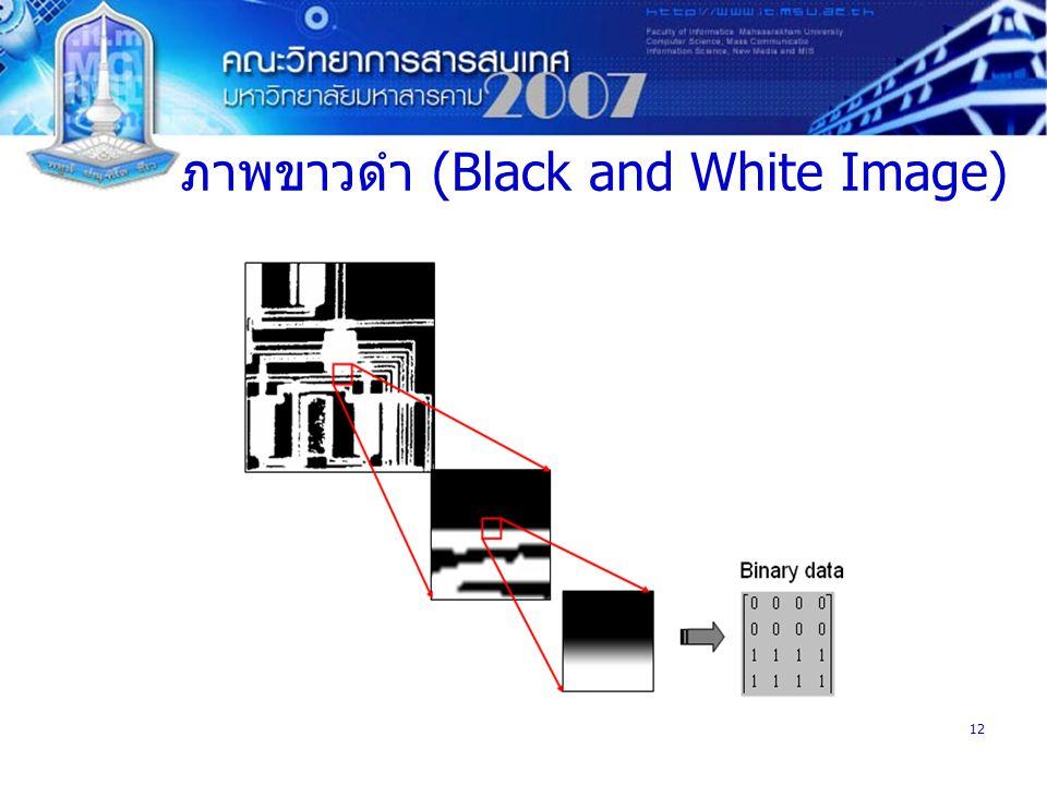 ภาพขาวดำ (Black and White Image)