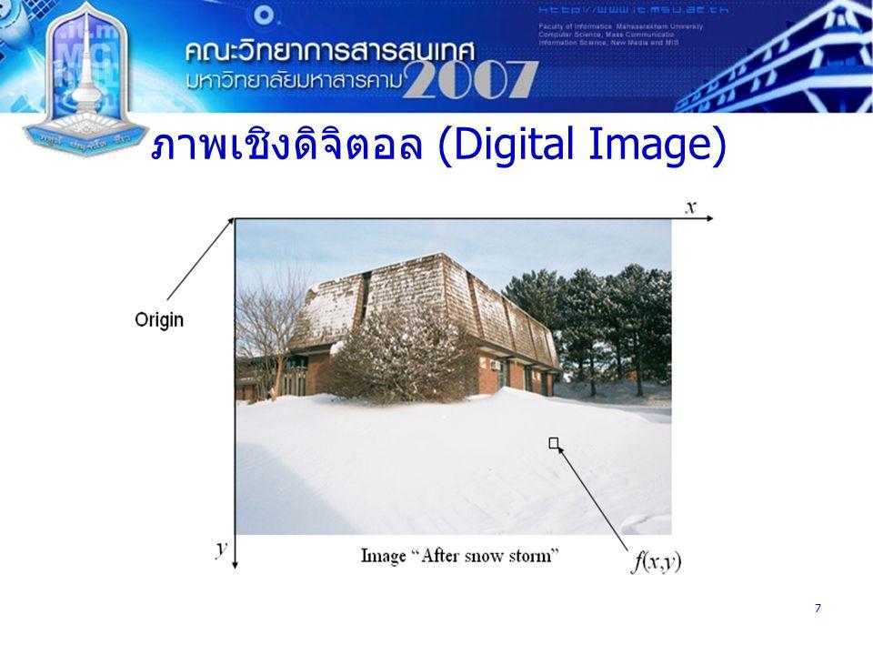 ภาพเชิงดิจิตอล (Digital Image)