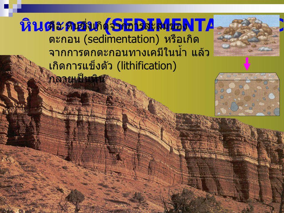 หินตะกอน (SEDIMENTARY ROCKS)