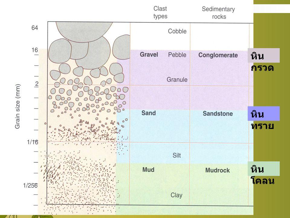 หินกรวด หินทราย หินโคลน