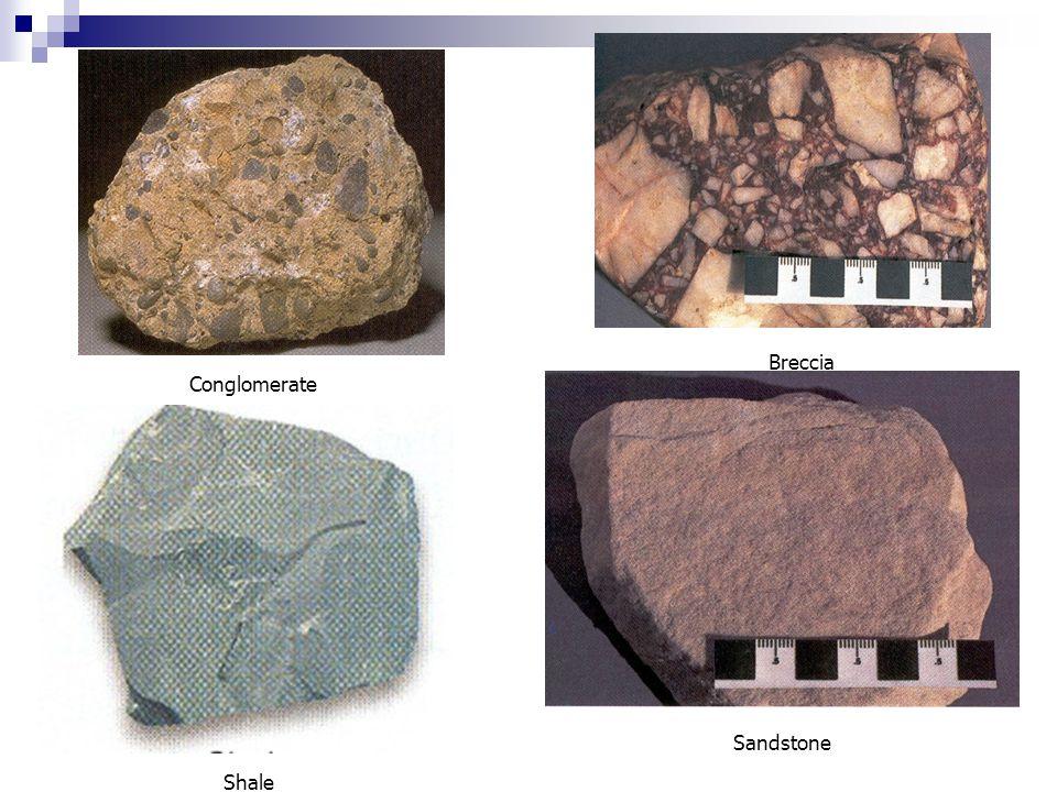 Breccia Conglomerate Sandstone Shale