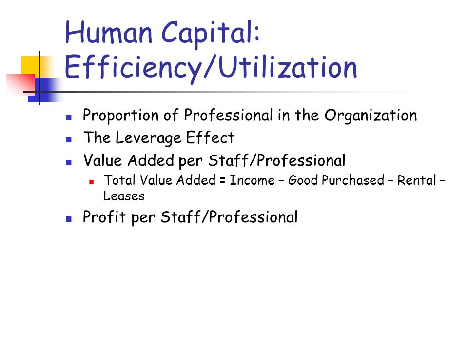 Human Capital: Efficiency/Utilization