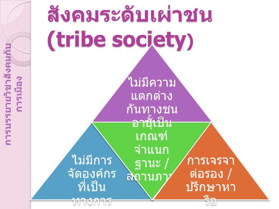 สังคมระดับเผ่าชน (tribe society)