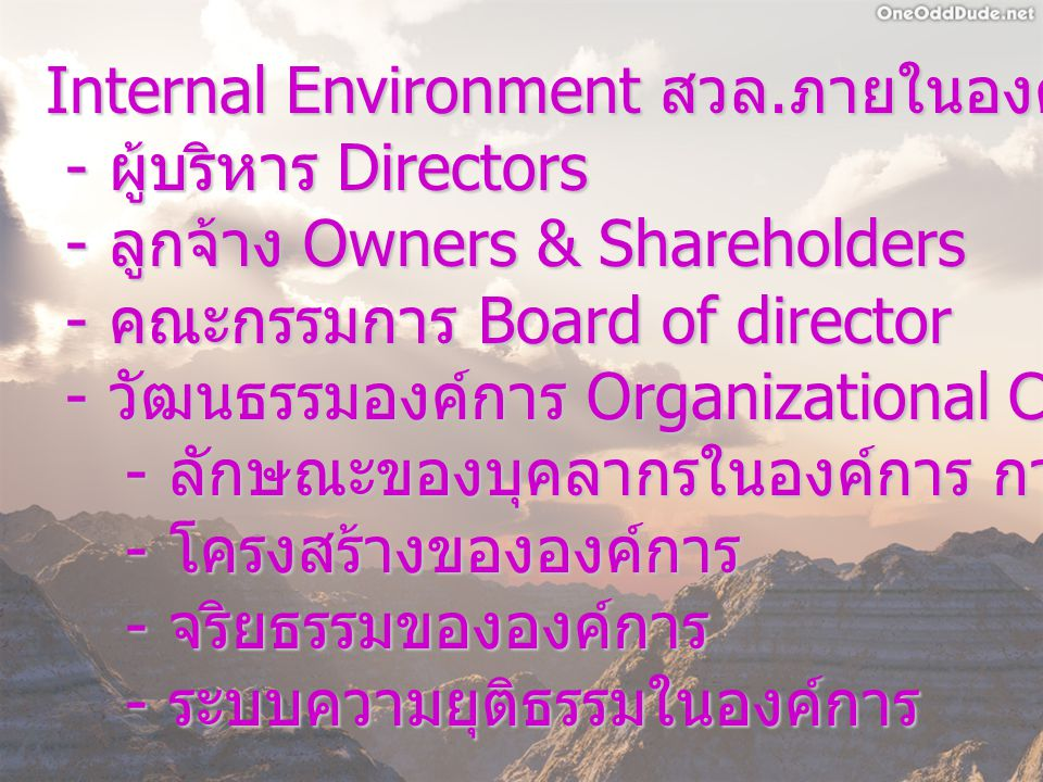 Internal Environment สวล.ภายในองค์การ