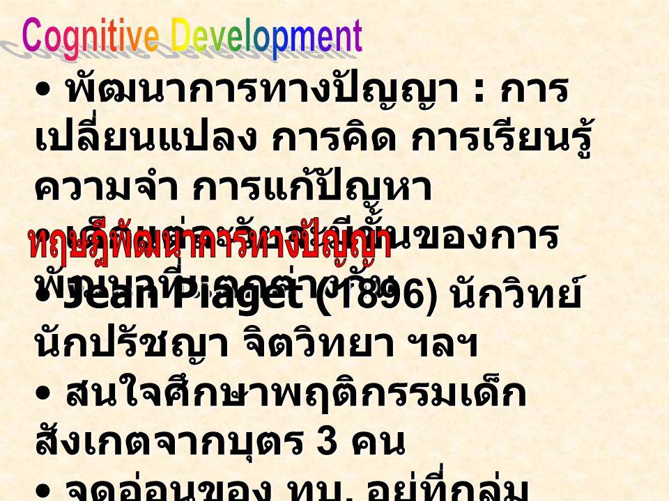 Cognitive Development ทฤษฎีพัฒนาการทางปัญญา