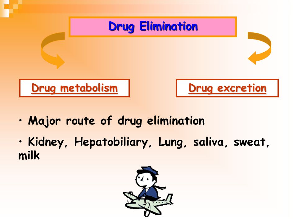 Major route of drug elimination