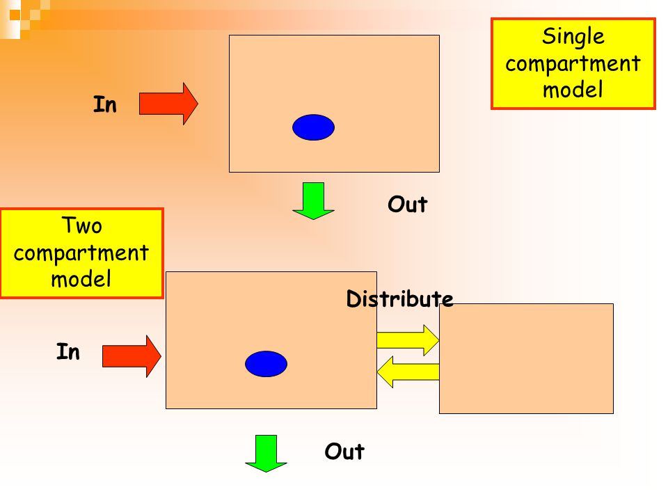 Single compartment model