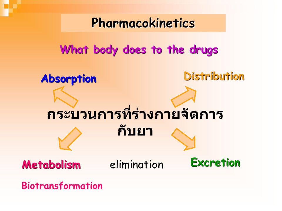 What body does to the drugs กระบวนการที่ร่างกายจัดการกับยา