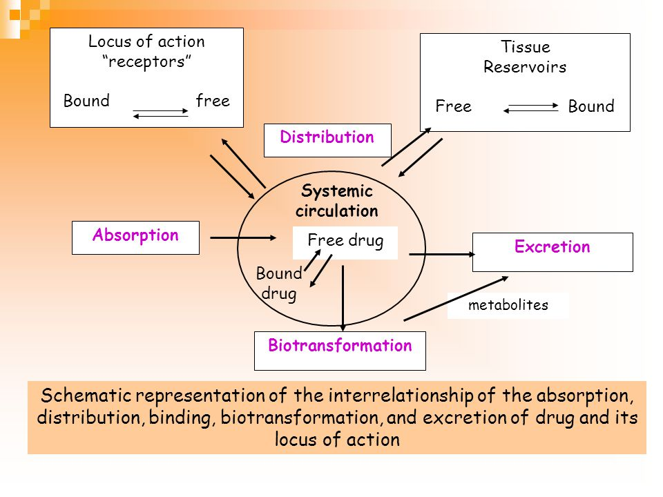 Locus of action receptors