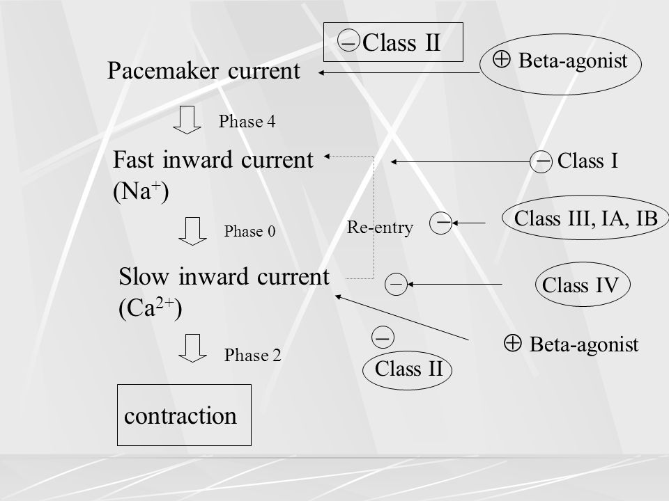 Fast inward current (Na+)  Class I