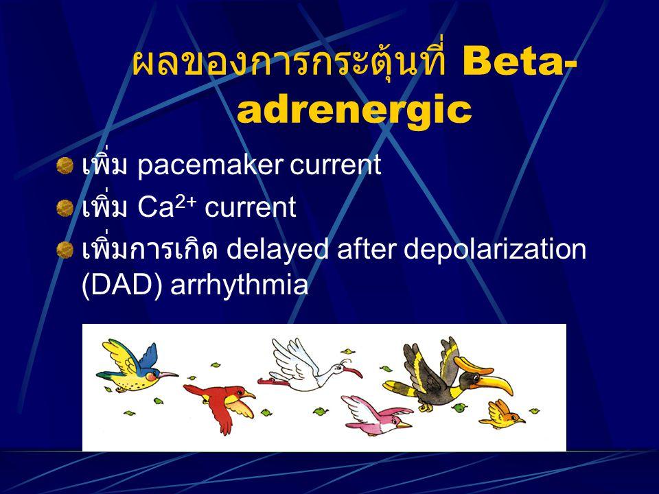 ผลของการกระตุ้นที่ Beta-adrenergic