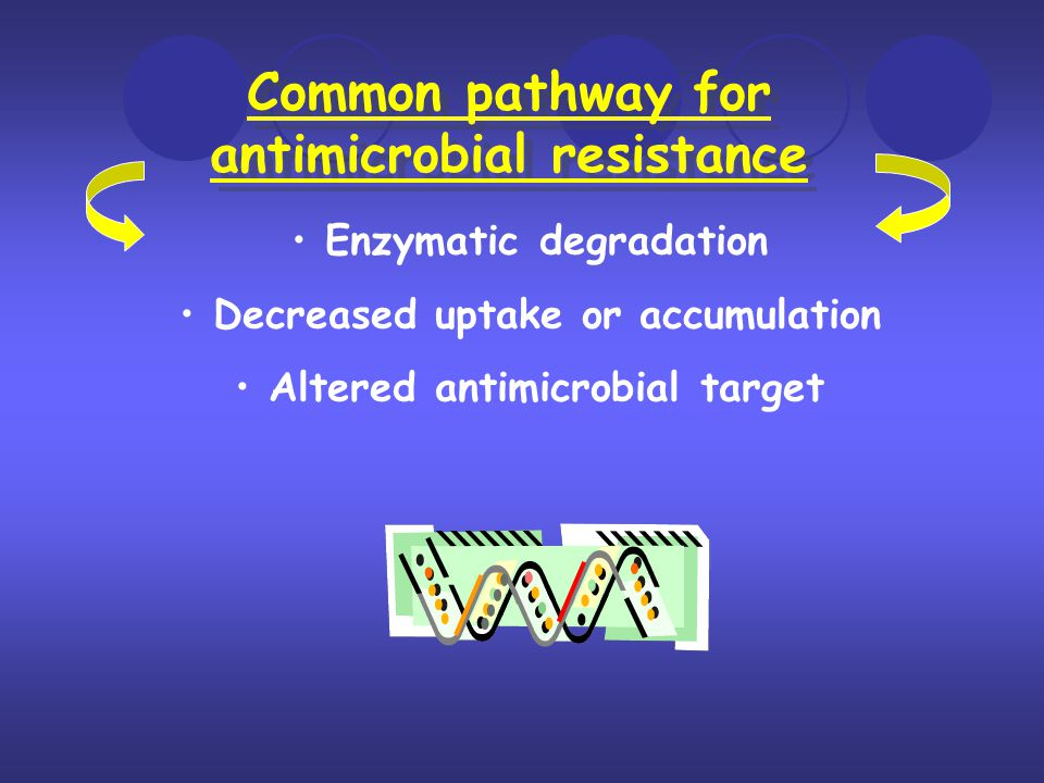 Common pathway for antimicrobial resistance