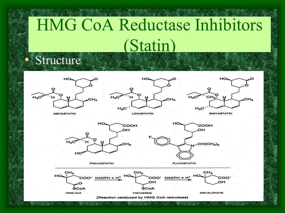 HMG CoA Reductase Inhibitors (Statin)