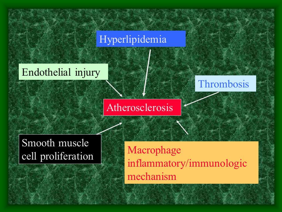 Hyperlipidemia Endothelial injury. Thrombosis. Atherosclerosis. Smooth muscle cell proliferation.