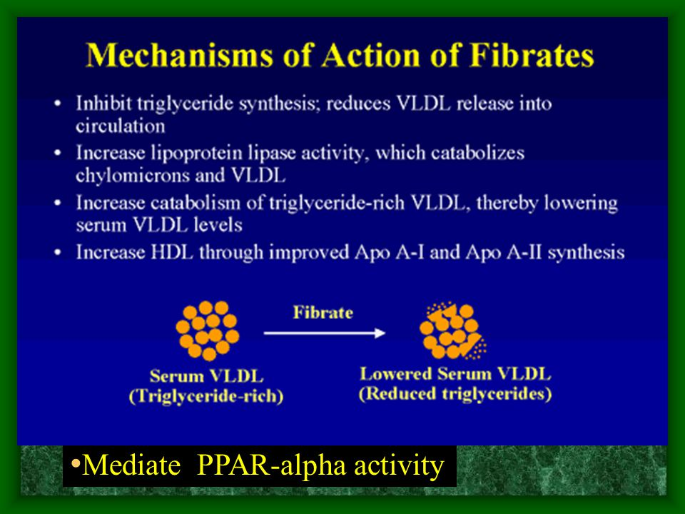 Mediate PPAR-alpha activity