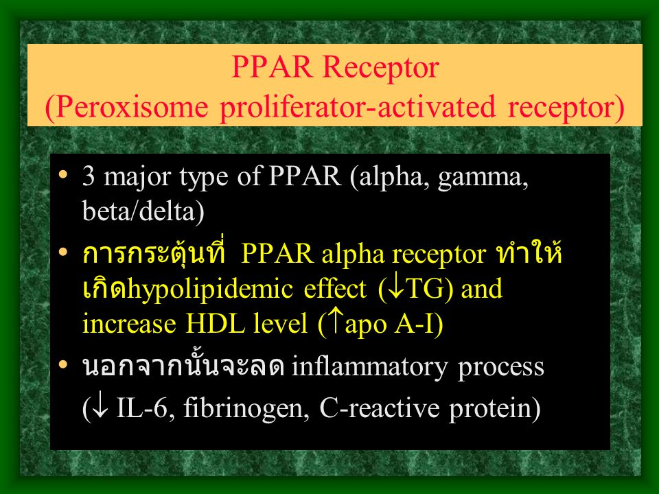 PPAR Receptor (Peroxisome proliferator-activated receptor)