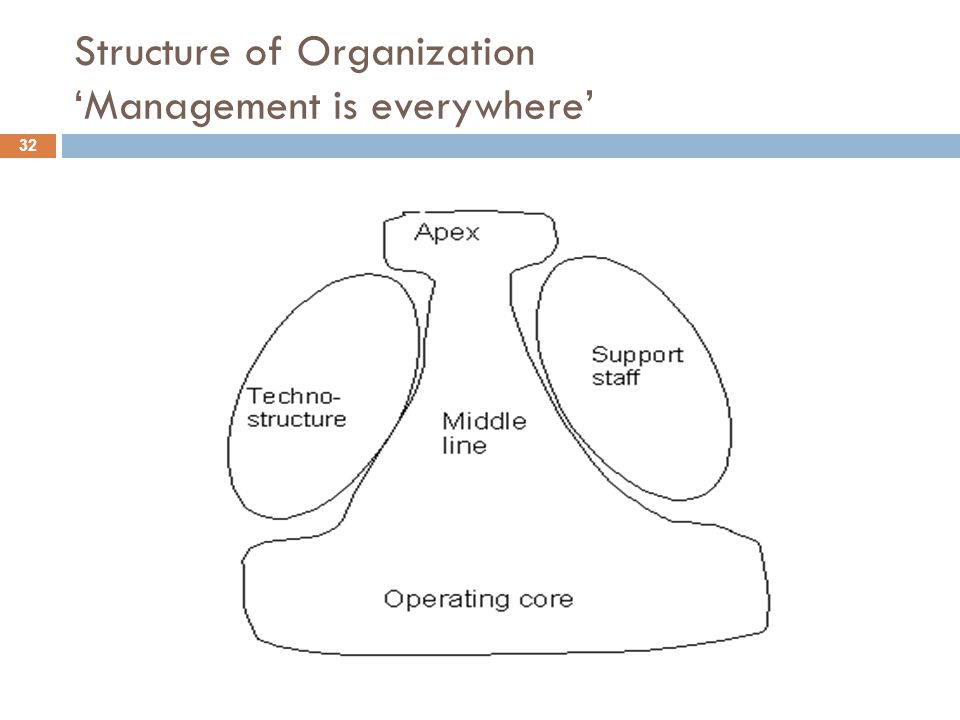 Structure of Organization 'Management is everywhere'