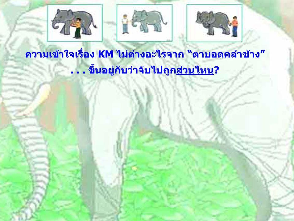 ความเข้าใจเรื่อง KM ไม่ต่างอะไรจาก ตาบอดคลำช้าง