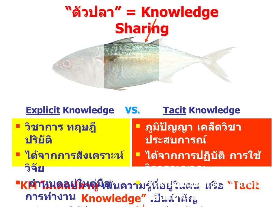 ตัวปลา = Knowledge Sharing