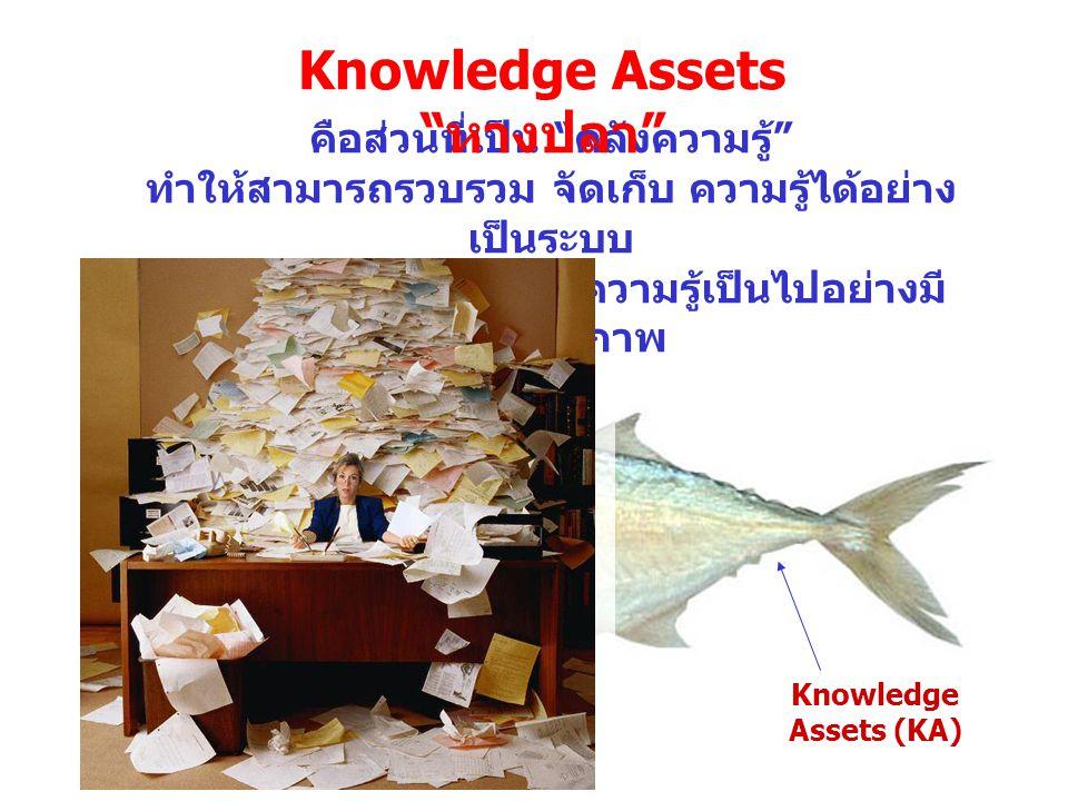 Knowledge Assets หางปลา