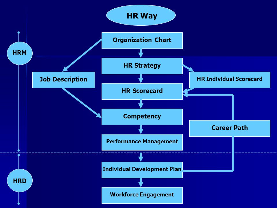 HR Way Organization Chart HRM HR Strategy Job Description HR Scorecard