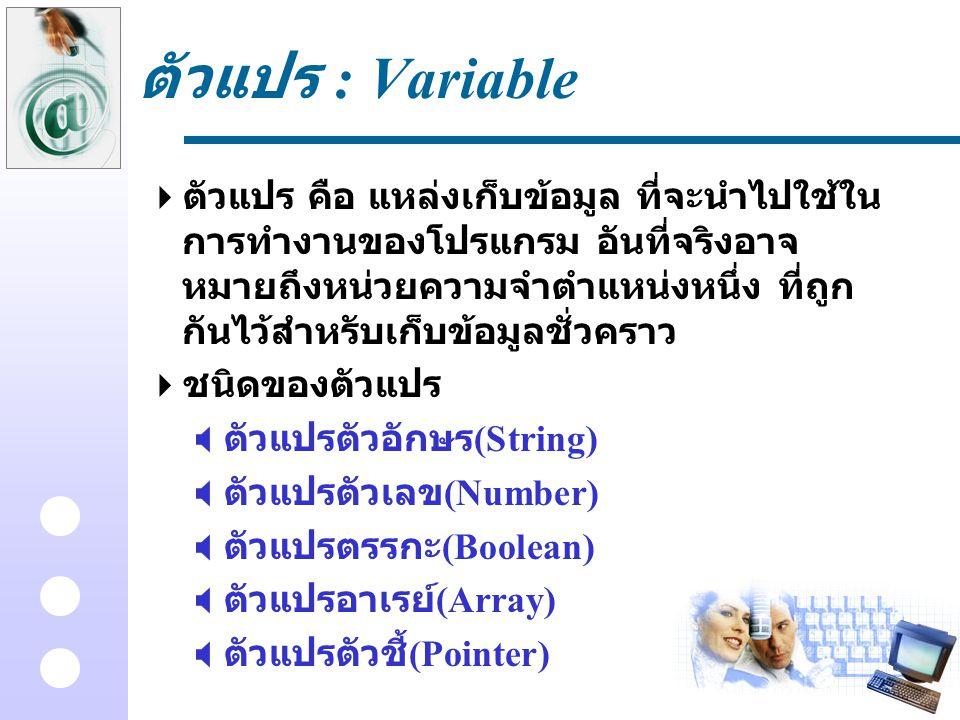 ตัวแปร : Variable