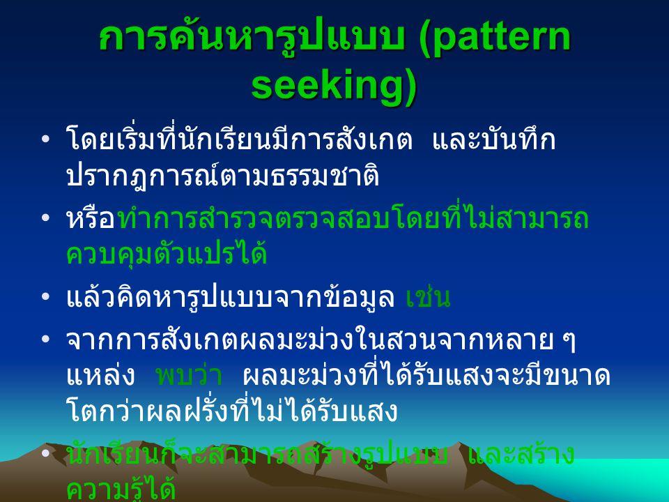 การค้นหารูปแบบ (pattern seeking)