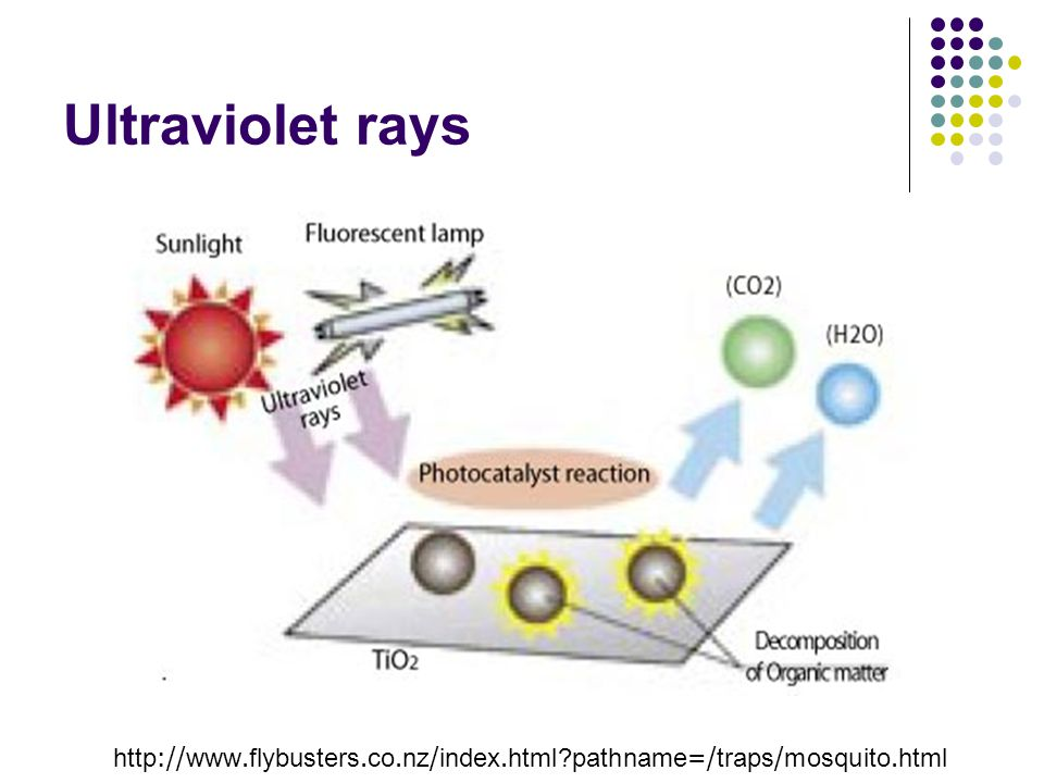 Ultraviolet rays http://www.flybusters.co.nz/index.html pathname=/traps/mosquito.html