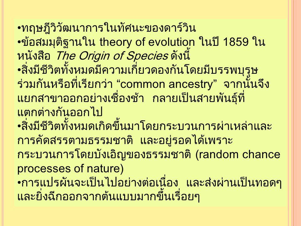ทฤษฎีวิวัฒนาการในทัศนะของดาร์วิน