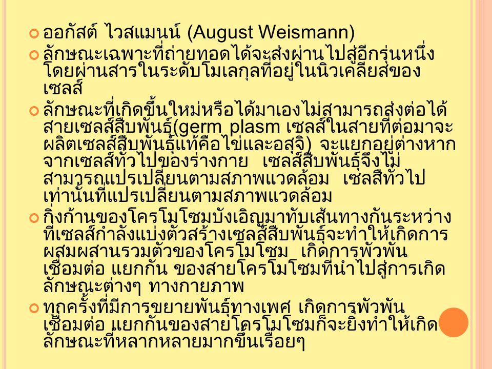 ออกัสต์ ไวสแมนน์ (August Weismann)