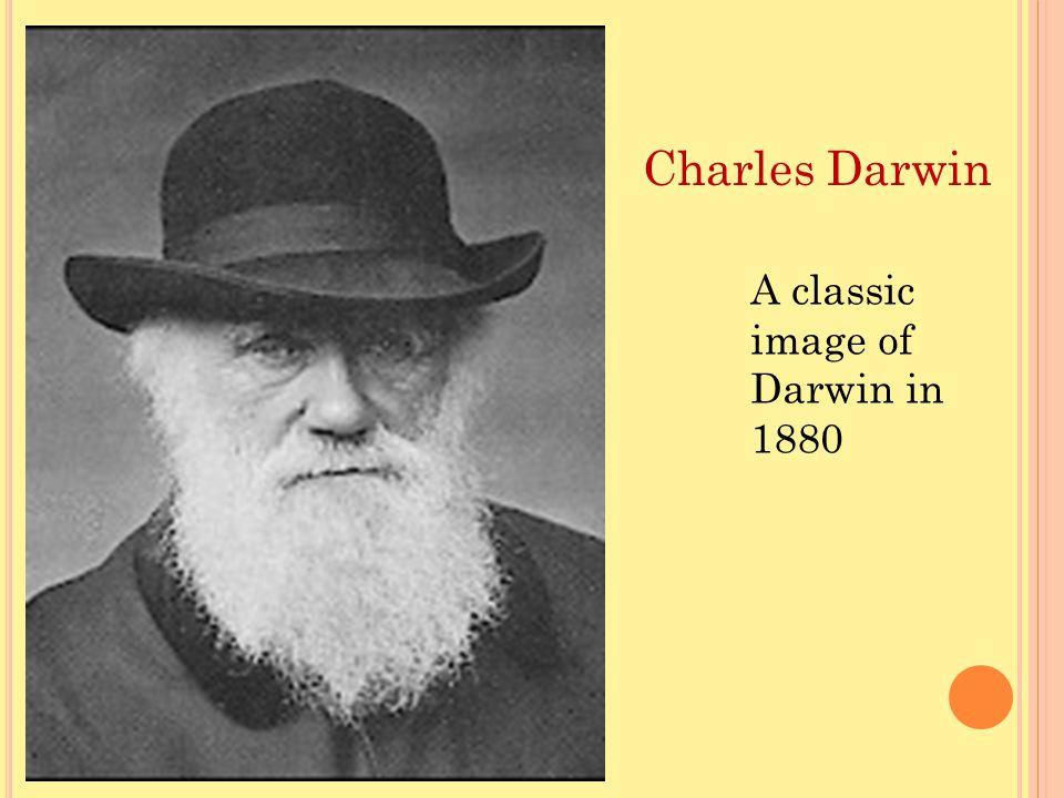 Charles Darwin A classic image of Darwin in 1880