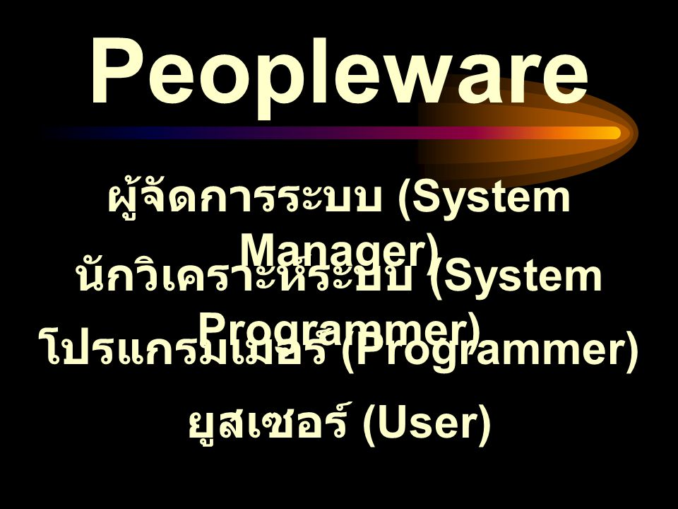 Peopleware ผู้จัดการระบบ (System Manager)