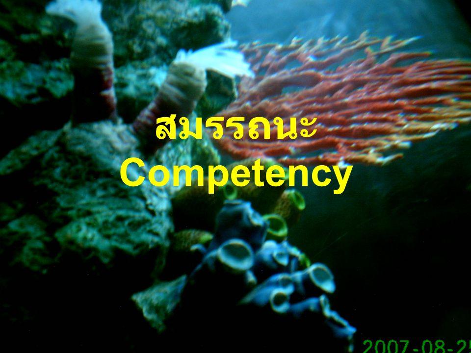 สมรรถนะ Competency