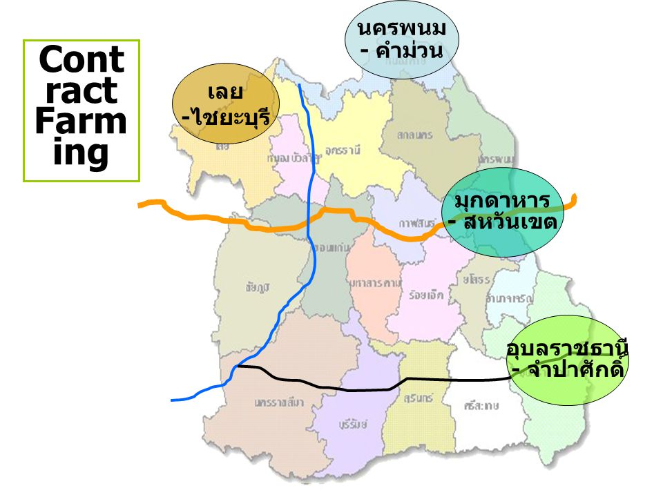 Contract Farming นครพนม - คำม่วน เลย -ไชยะบุรี มุกดาหาร - สหวันเขต