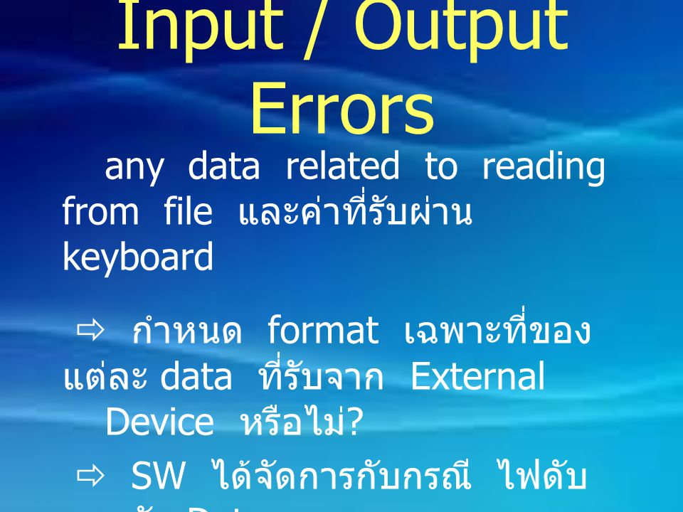 Input / Output Errors any data related to reading from file และค่าที่รับผ่าน keyboard.