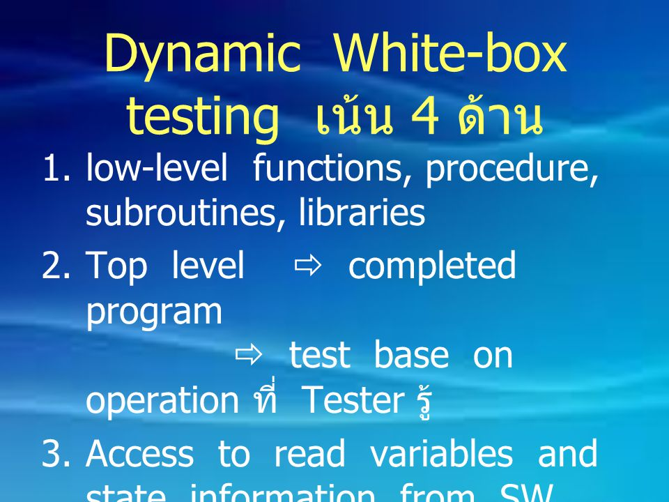 Dynamic White-box testing เน้น 4 ด้าน