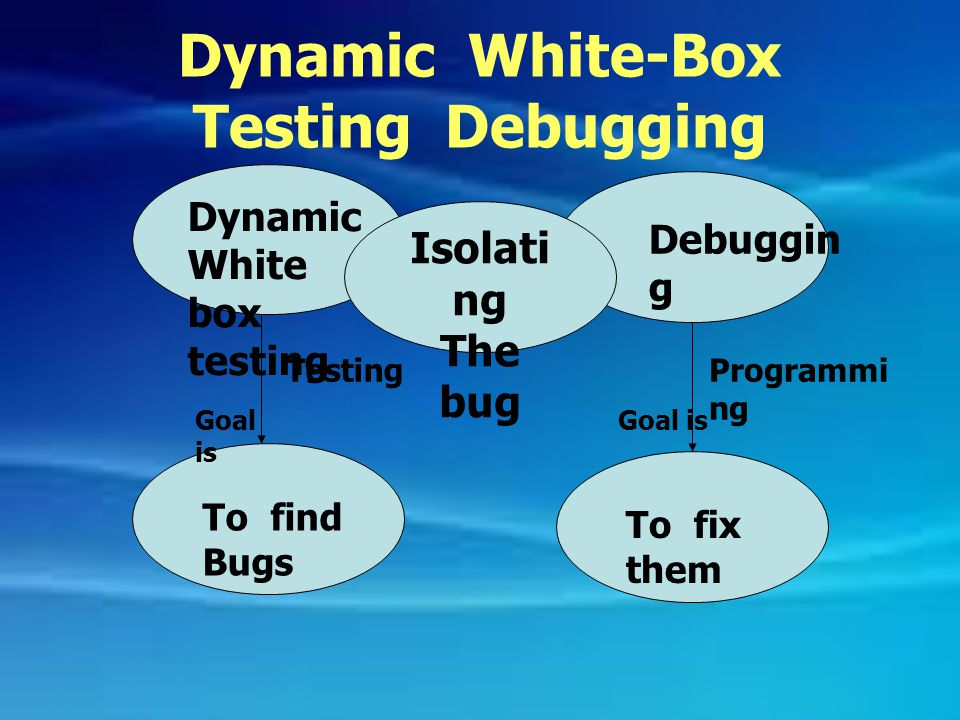 Dynamic White-Box Testing Debugging
