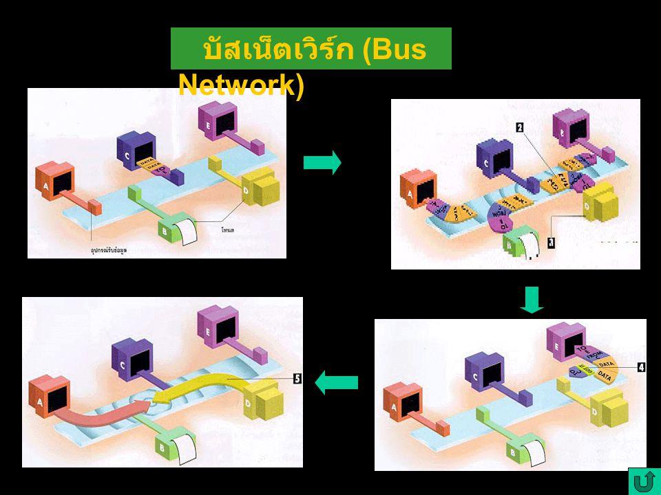บัสเน็ตเวิร์ก (Bus Network)