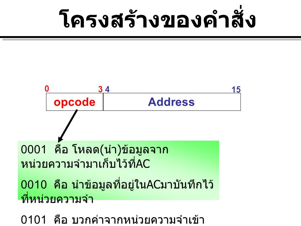 โครงสร้างของคำสั่ง opcode Address
