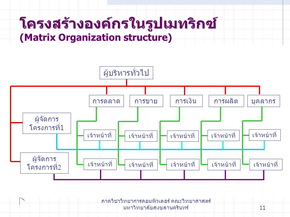 โครงสร้างองค์กรในรูปเมทริกซ์ (Matrix Organization structure)