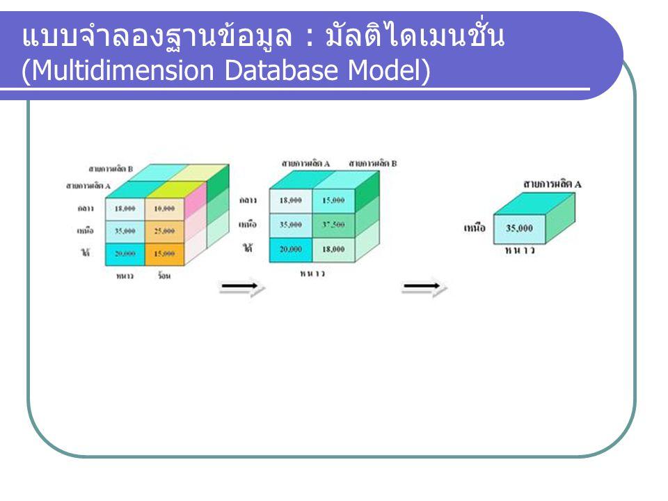 แบบจำลองฐานข้อมูล : มัลติไดเมนชั่น (Multidimension Database Model)