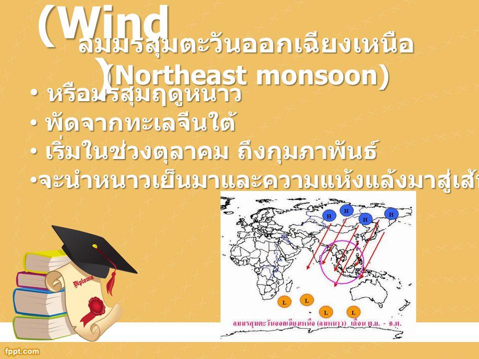 ลมมรสุมตะวันออกเฉียงเหนือ (Northeast monsoon)